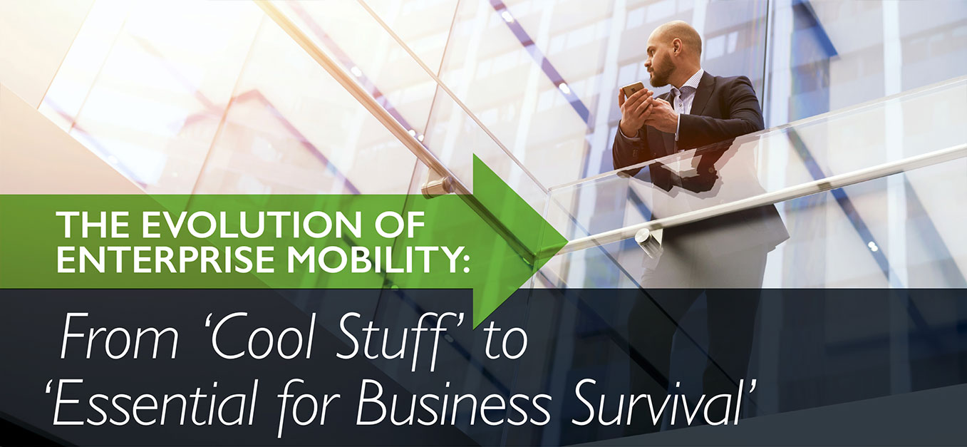 From Cool Stuff to Essential for Business Survival